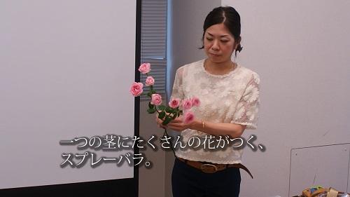 日比谷花壇デモンストレーション