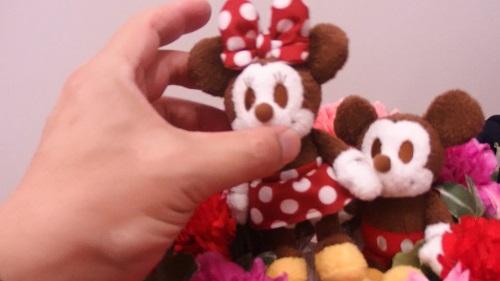 日比谷花壇母の日ディズニー アレンジメント「ミッキー&ミニー サンクスリース」