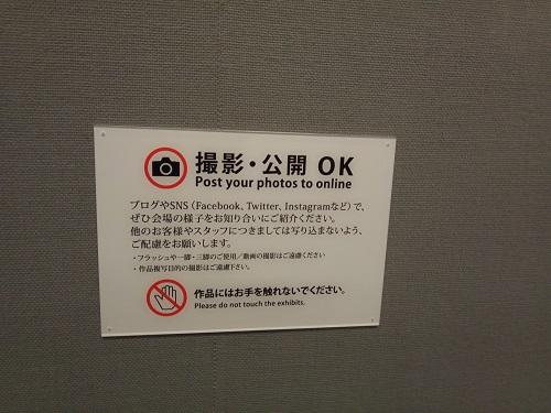 フジフィルムスクエア富士フィルムスクエア金川信江個展「根っこ」