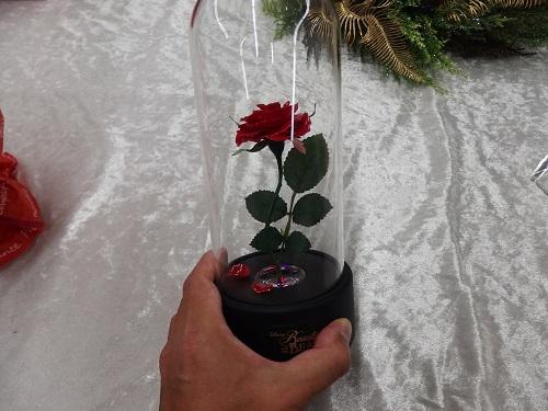 日比谷花壇マジカルローズ美女と野獣