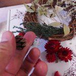 クリスマス&お正月リースを自分で簡単に作れる!~日比谷花壇のXmasお正月おすすめ